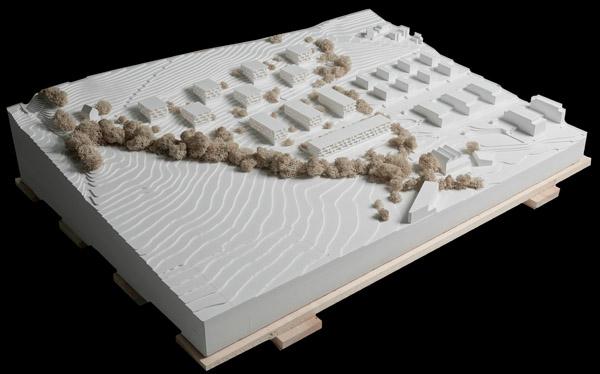 gemeinde root projektideen f r eine neue berbauung sind ausgestellt. Black Bedroom Furniture Sets. Home Design Ideas