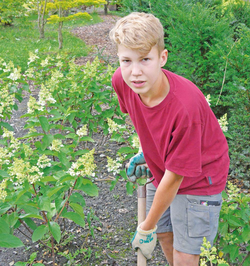 Gartenbau Müller das 1 lehrjahr geht zu ende rontaler ch