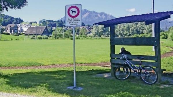 Auf dem Sportfeld Risch in Ebikon ist das Hundeverbot neu signalisiert. Bild zVg.