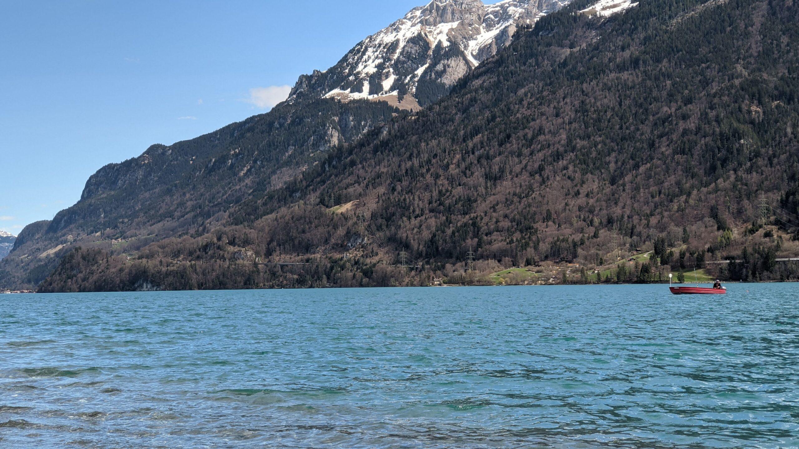 G-nstiger-Fischerzubeh-r-Angelshop-in-der-Schweiz